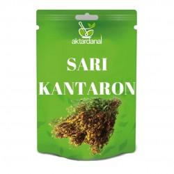 Sarı Kantaron